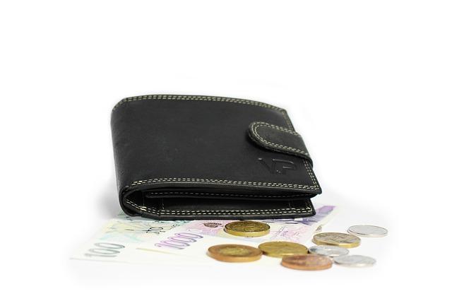 peněženka na penězích