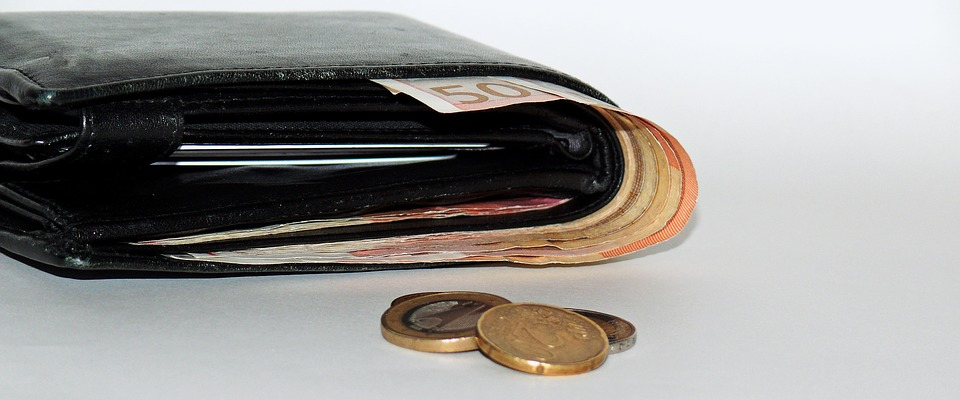 peníze v portmonce